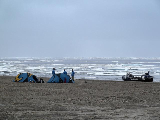 Copy (2) of Shoreline Camp LARGE