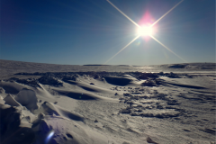 Arctic Experience pres